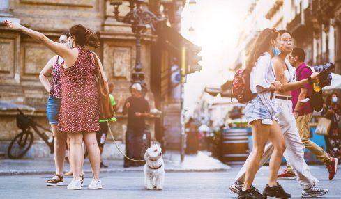 Personne qui promène son chien